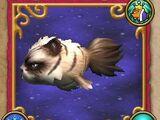 Pesce: Pesce gatto irascibile