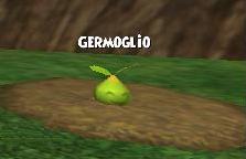 Germoglio