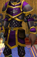 Robe DS Malistaire's Wrathful Wrap Male