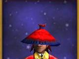Pilgrim's Hat