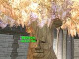 Blossom, the Life Tree
