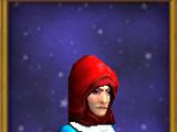Cleric's Hood