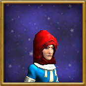 Hat WC Cleric's Hood Male