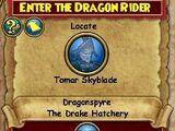 Enter the Dragon Rider