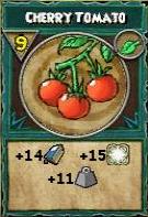 Snack Cherry Tomato