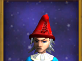 Regal Hat