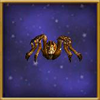 Brown Spider (Pet)