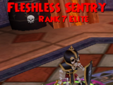 Fleshless Sentry