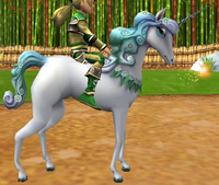 Dream Filly