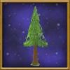 Medium Birch Tree