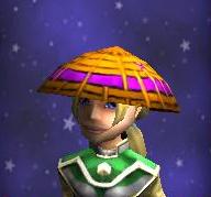 Hat Headwraps of the Zealous Female