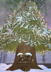 Kelvin the Ice Tree
