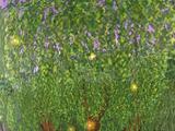 Ivan, the Myth Tree