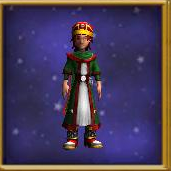 Robe Rogue's Coat Male