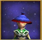 Hat Pilgrim's Hat Female