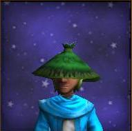 Hat Druidic Cowl Male