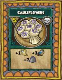 Snack Cauliflowers