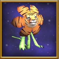 Κρίνος Τίγρης