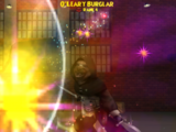 O'Leary Burglar