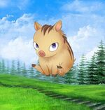 Piglet Elias