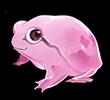 An klausbd3 he Lana Puruit Frog