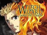 Manga Novel Adaption