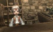 Armor-shop-clerk