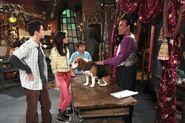 1x08 shopping a dragon dog 2
