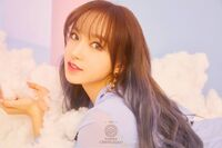 ChengXiao DYD