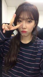 Dawon (8)
