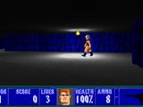 Wolfenstein 3D Lite