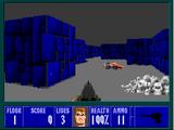 Beyond Wolfenstein