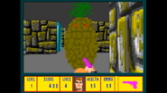 Pineapple03