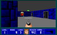 Wolfenstein Meets Pacman 1