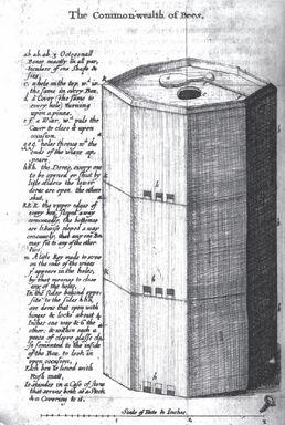 Copy-of-commonwealth-of-bees-wren-hive-design