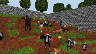 World of Cubes - Animals Flash Mob
