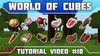 WoC Tutorials Food Overview (Part 5 Meat)
