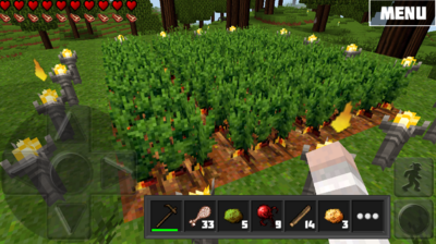 Carrotfarming