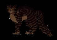 Tiger Mroczna Puszcza