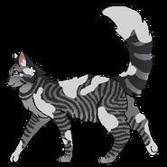 Lillyheart warrior