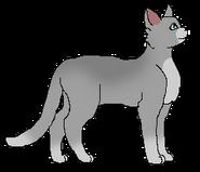 Stonetail