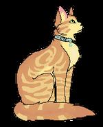 Lulu kotdomowy