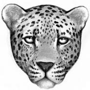 Leopard.FG-1