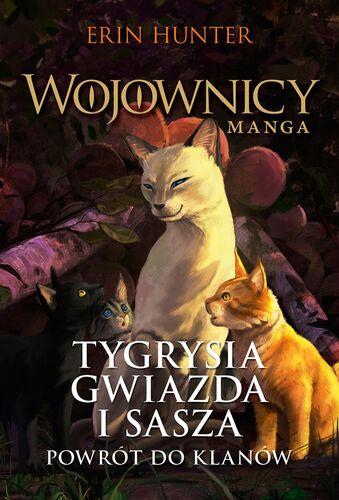 Polska okładka