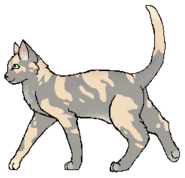 Pale caolico Tawnypelt warrior