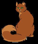 Squirrelflight Loner