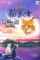 Tradycyjny Chiński w Ostatnia Nadzieja