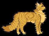 Lwi Płomień