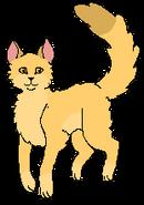 Lwie Oko Martwa