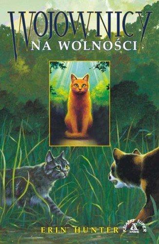 Starsza polska okładka